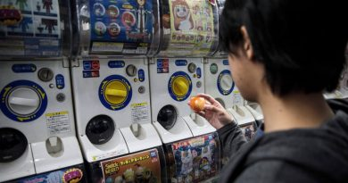 The Japanese Slang Everyone Is Talking About Is Oya-Gacha